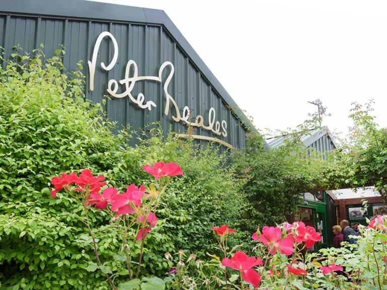 Modern new restaurant at peter Beales