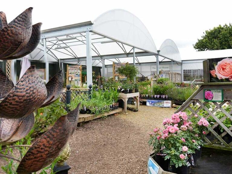 Plant Centre in Norfolk