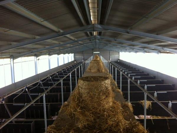 Pig finishing unit design, Stoven, Suffolk